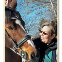 Välkommen till ett nytt år med Hästföretagarna!